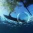 Ocean_1_blog